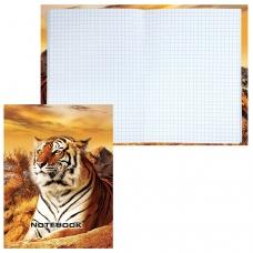 Блокнот 7БЦ, А6, 80 л., обложка ламинированная, клетка, STAFF, Тигровый, 110х147 мм, 120949