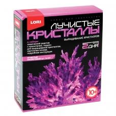 Набор для изготовления лучистых кристаллов Фиолетовый кристалл, реагент, краситель, LORI, Лк-007